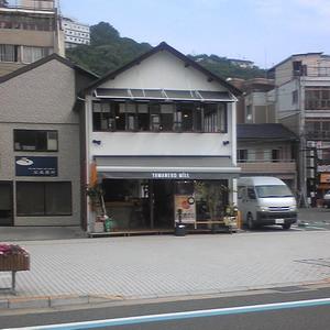 150621yamaneko1