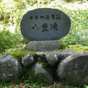 190117yaetaki2
